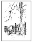 pen and ink sketch of an iron fence and bare tree