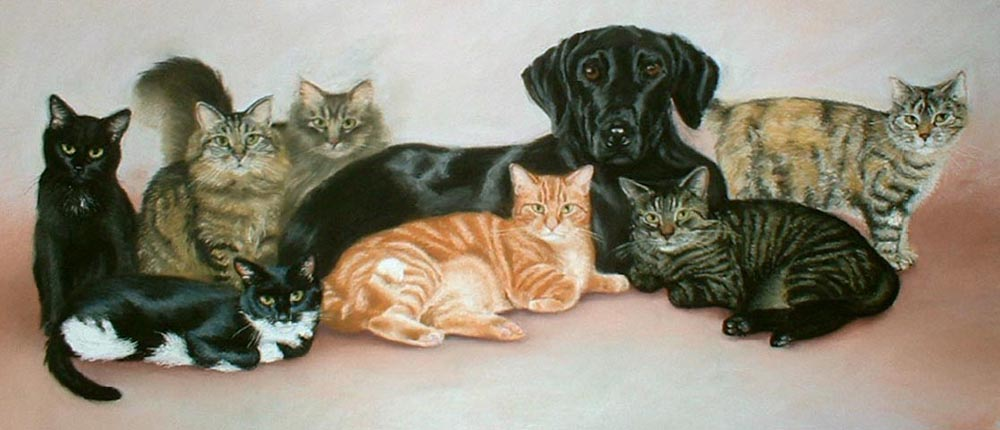 The Johnson Family commissioned pet portrait