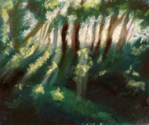 pastel painting of sunbeams through trees